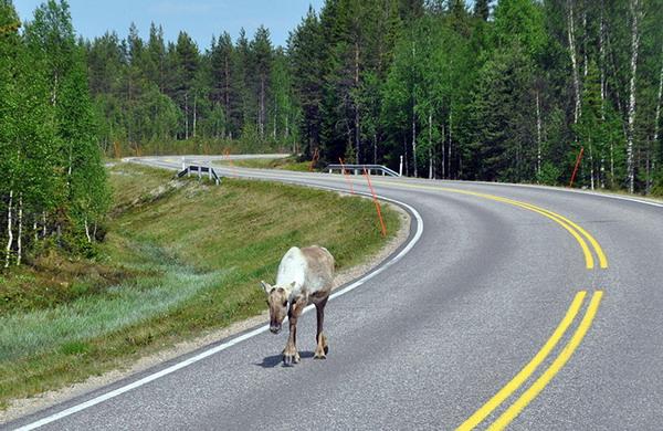 Поездка в Финляндию на машине