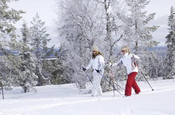 Беговые лыжи химос