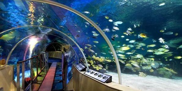 Sea Life Center Helsinki